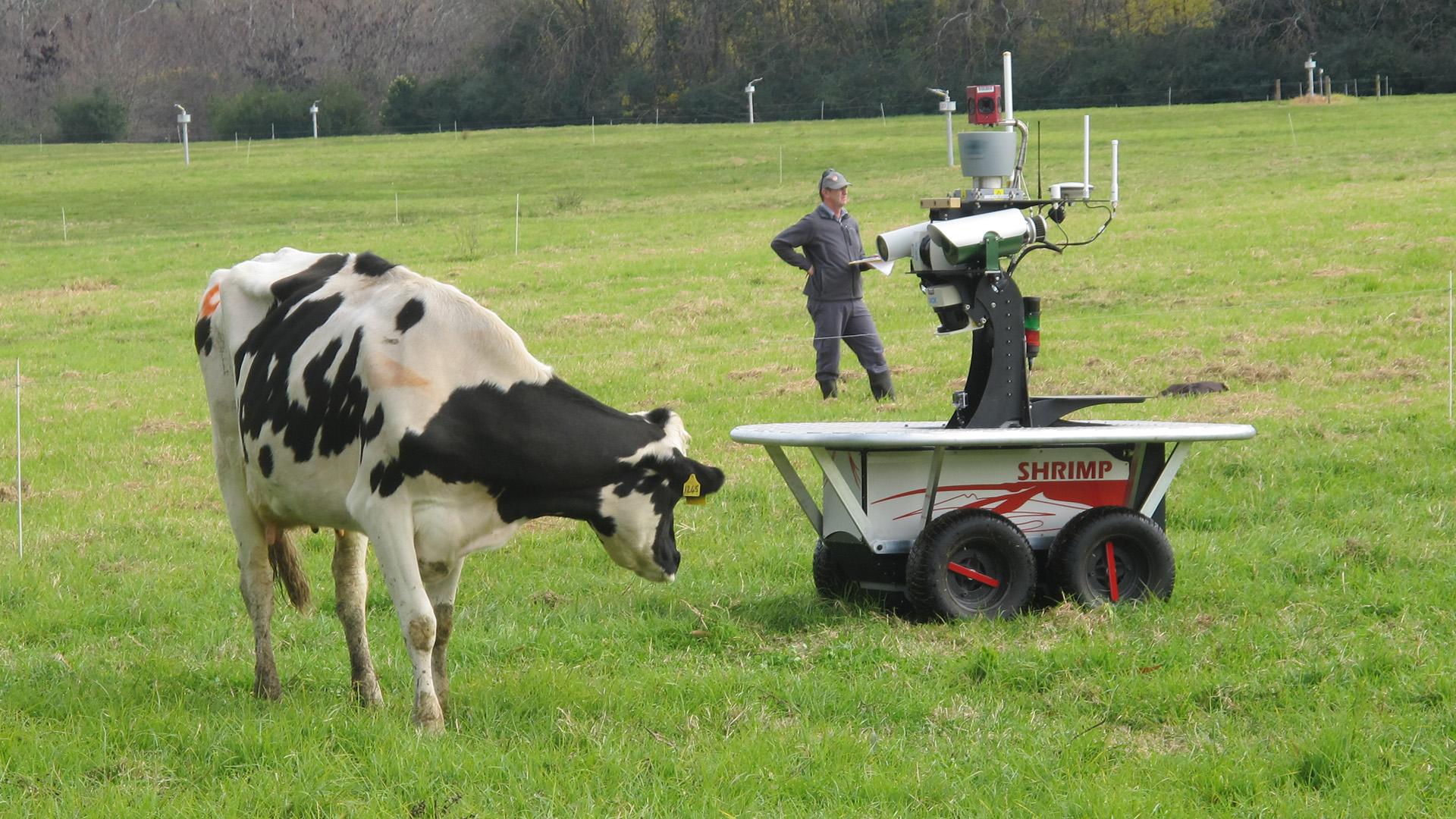 году реферат робототехника в сельском хозяйстве кроликами