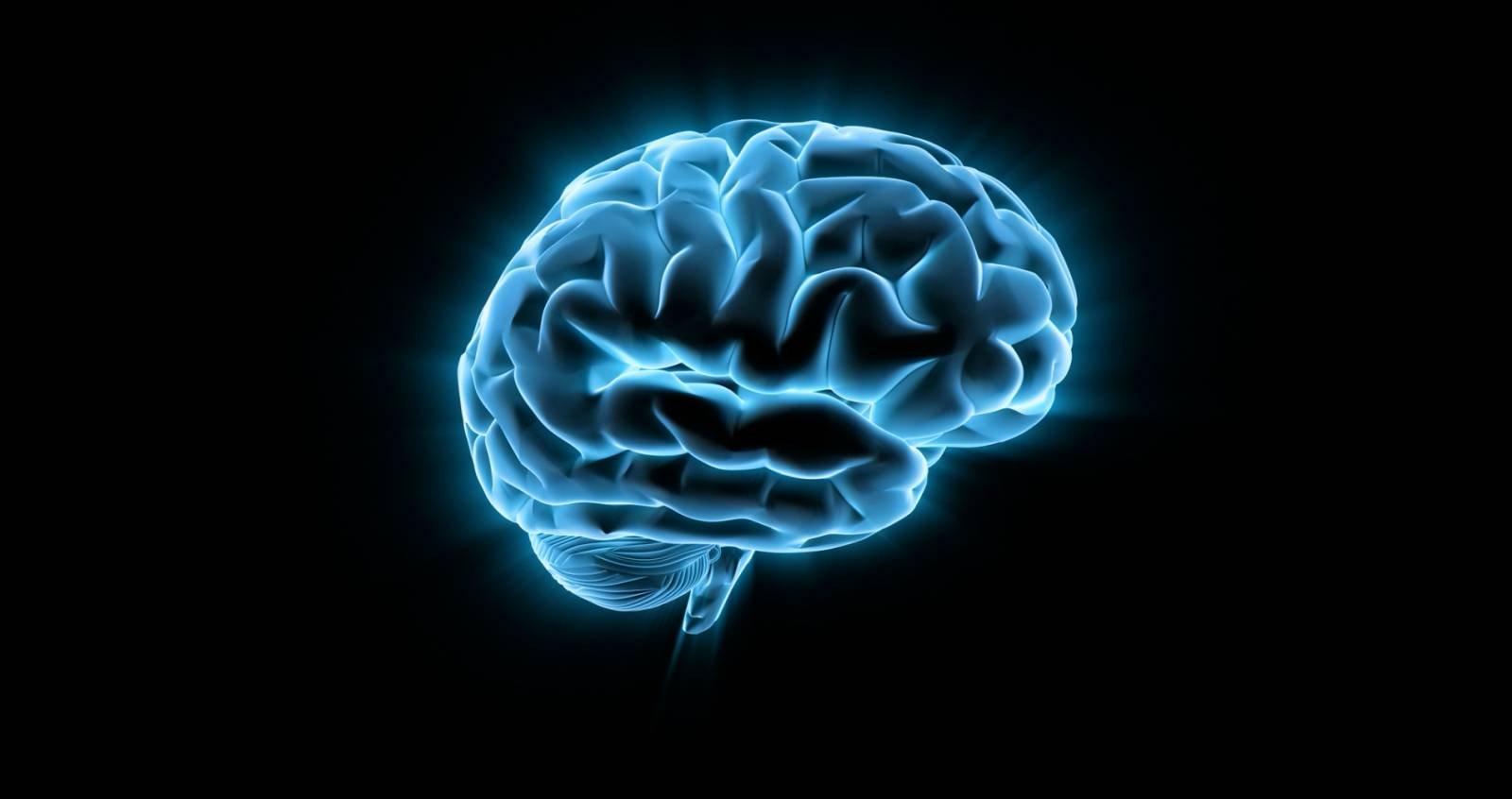 [recovery mode] Эликсир бессмертия, возможно, находится в нашем собственном мозге