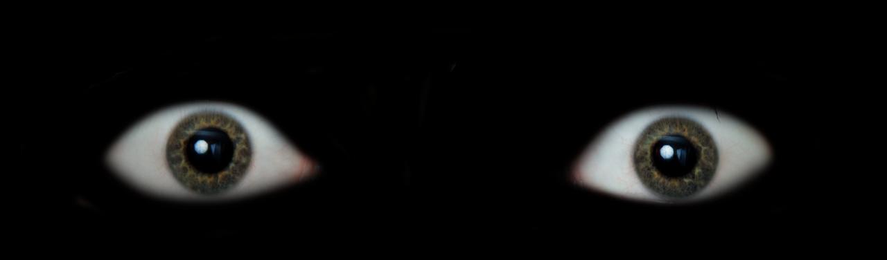 [Перевод] Как эволюция создавала ваш страх