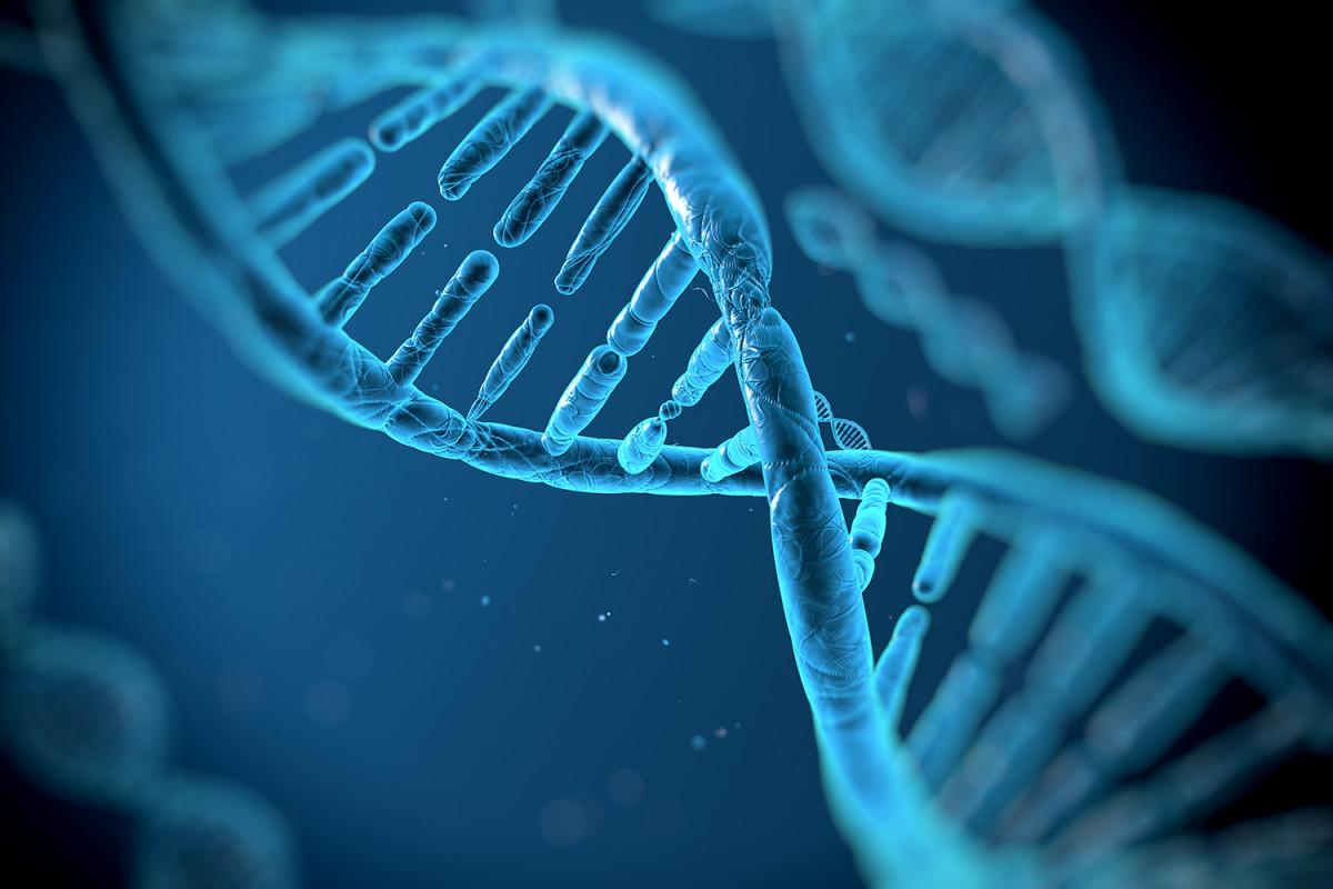 Зарегистрируй свою ДНК или плати: граждан Кувейта обязали сдавать генетический материал