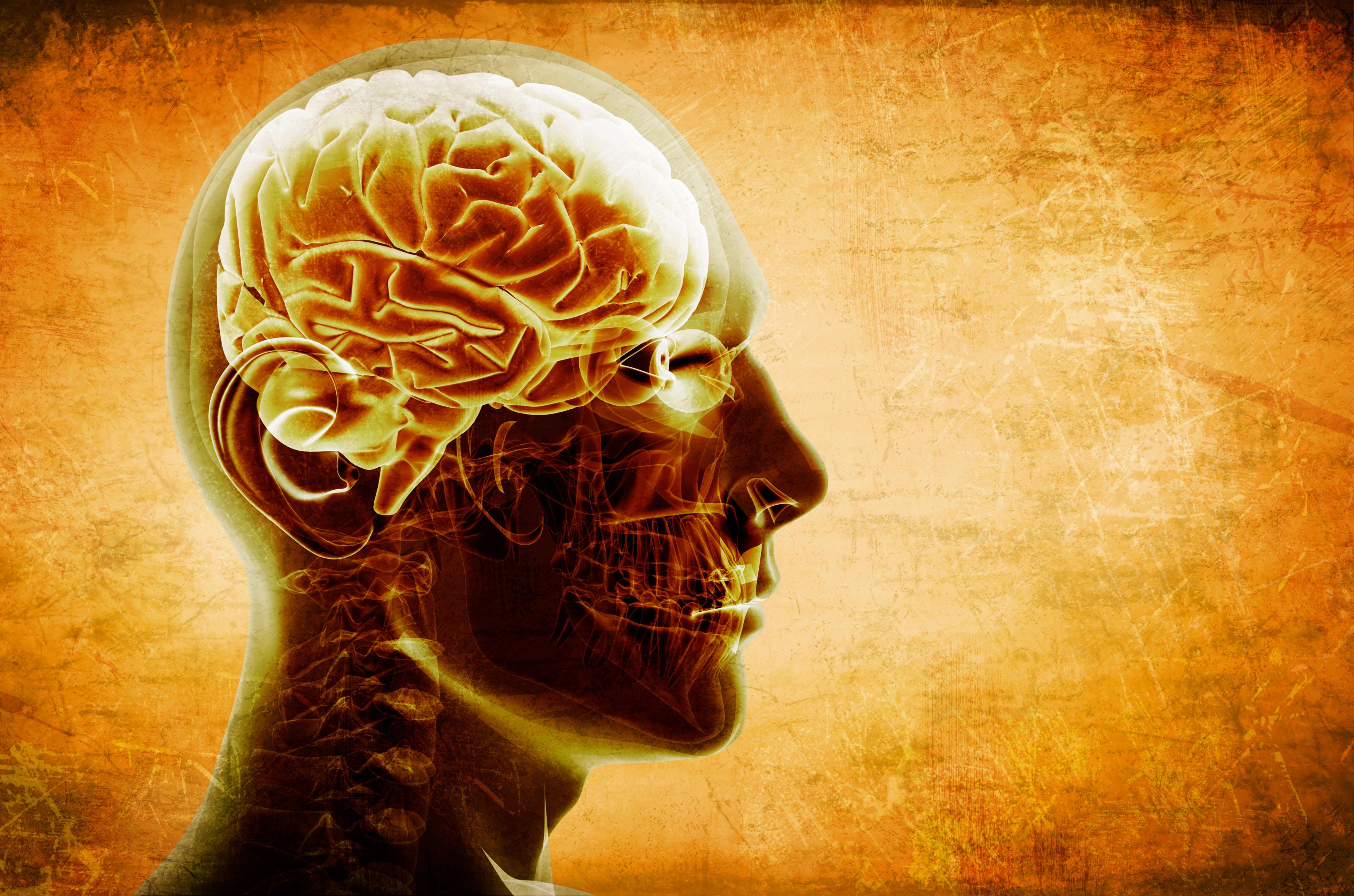 подарок картинки про мысль и мозга отекают