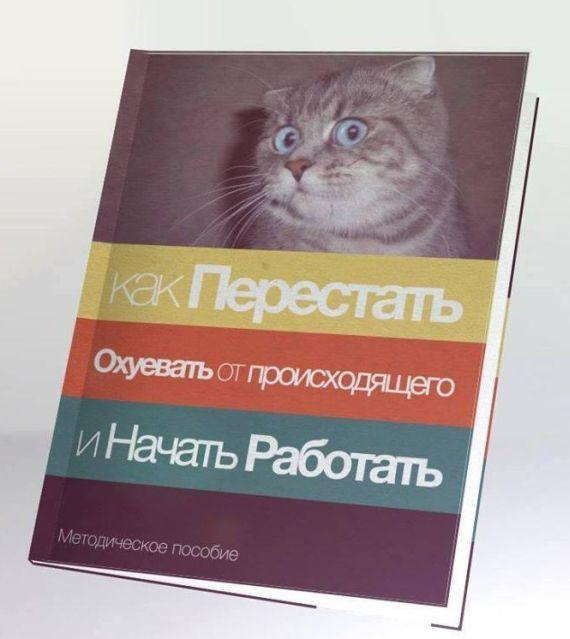 Книга, на книге изображён кот. Ниже написано: «как Перестать Охуевать от происходящего и Начать Работать». Ниже на книге подпись: «Методическое пособие».