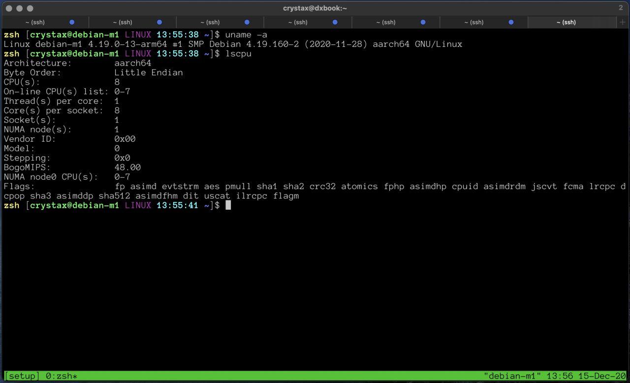 Linux on Apple M1
