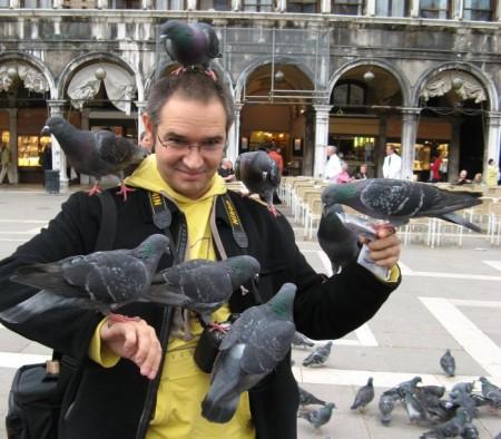 Носик и голуби