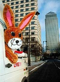 News Bunny hurries to the scene