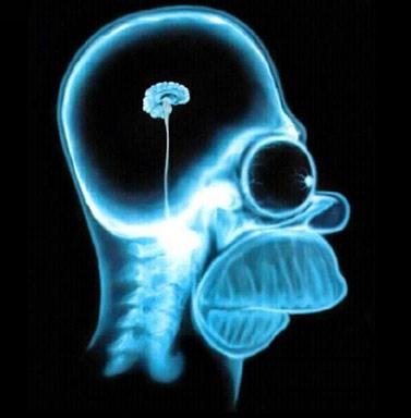 Powerful ASM programmer brain