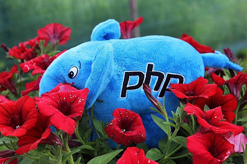 PHP-Дайджест № 111 – свежие новости, материалы и инструменты (12 – 25 июня 2017)