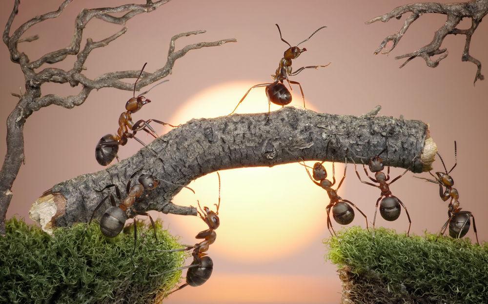 Инфраструктура обработки очередей в социальной сети Мой Мир