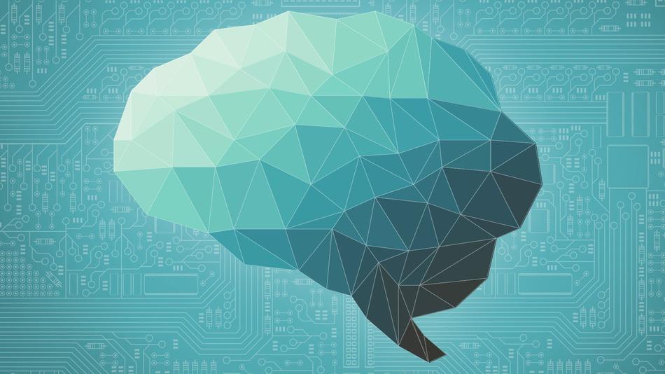 Нейропластичность — 8 изменений в человеке ... Изменения в Человеке