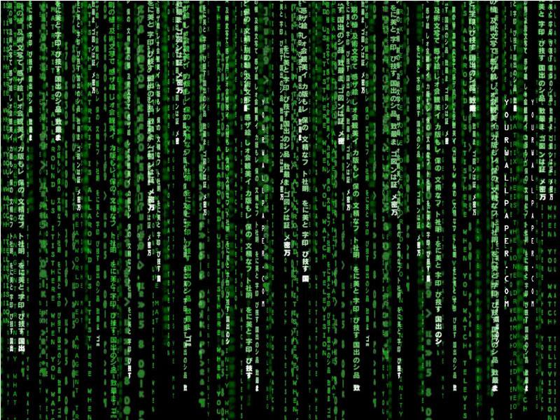 Рейтинг языков программирования в 2016 году