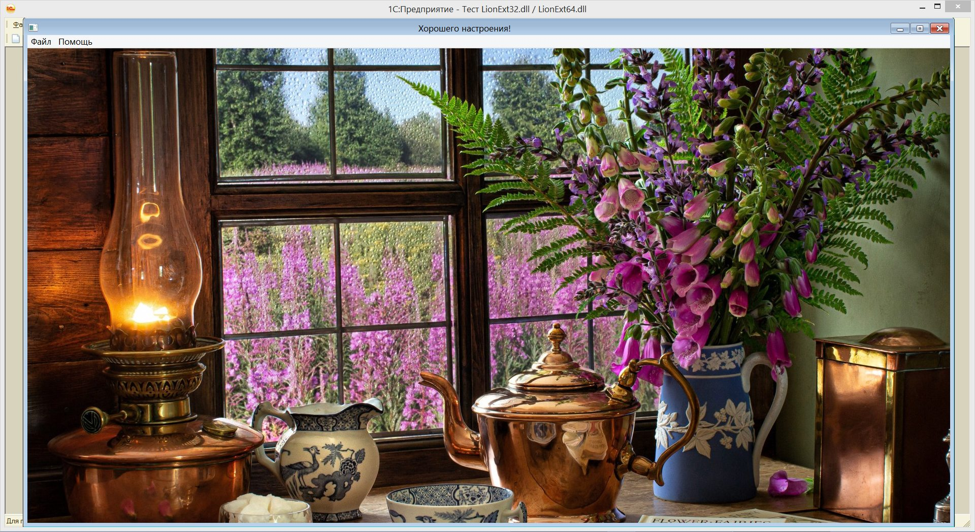 Рис. 10. Фоновое изображение во внешнем окне для обычных форм 1С83