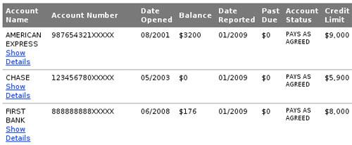 Рисунок 1: Частичный список открытых кредитных линий из кредитного отчёта (номера счетов изменены)