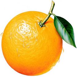 Апельсины здесь ни при чём