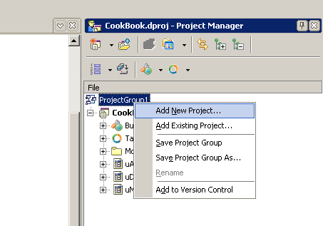 Project manager delphi