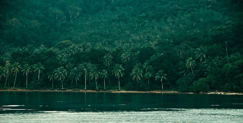 LinguaLeo Island -- остров Ко Чанг...