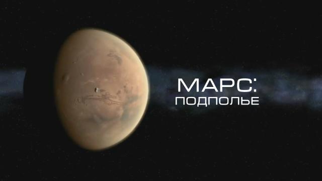 Перевод и озвучка фильма дома — The Mars Underground