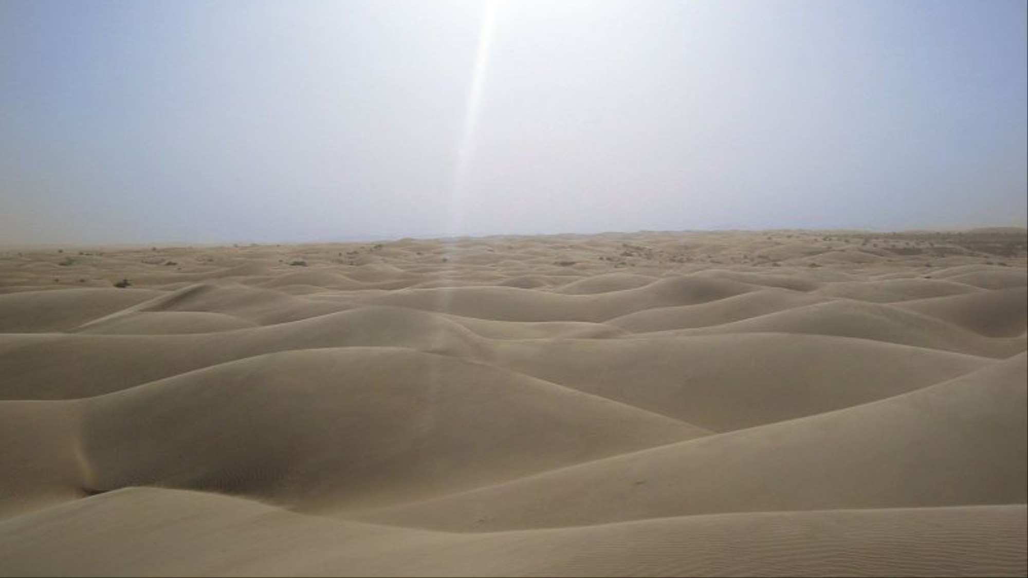 Wind and solar power stations in the Sahara will help improve the climatic conditions of the desert