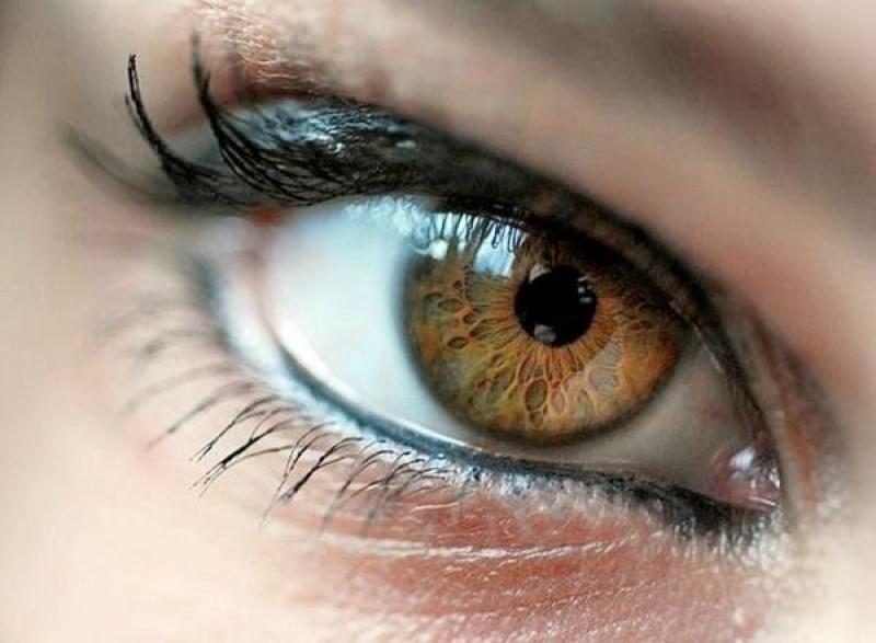Колбочка (Сетчатки Глаза) фото