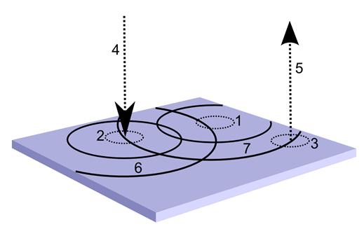Логика мышления. Часть 9. Паттерны нейронов-детекторов. Обратная проекция