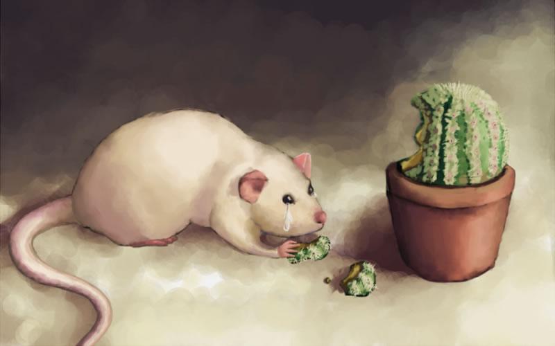 Мишки плакали і кололися