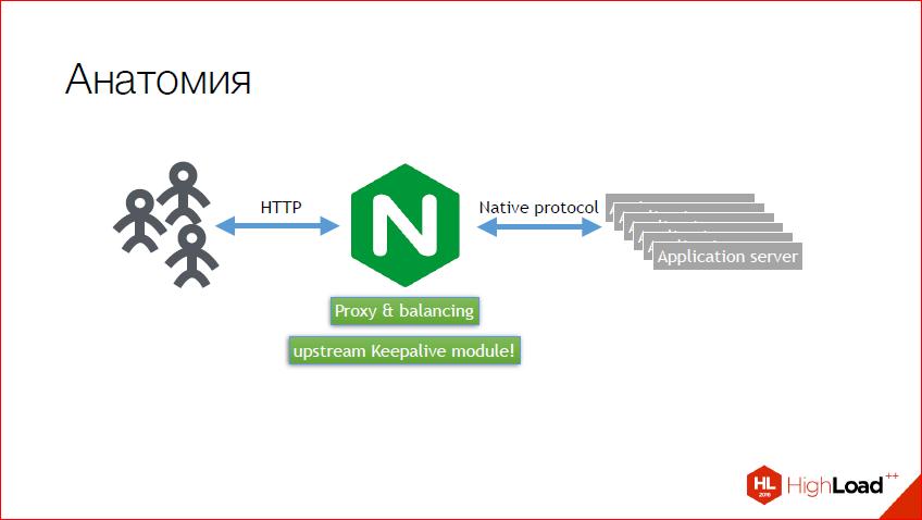 Как и зачем создавать NginX-модуль — теория, практика, профит