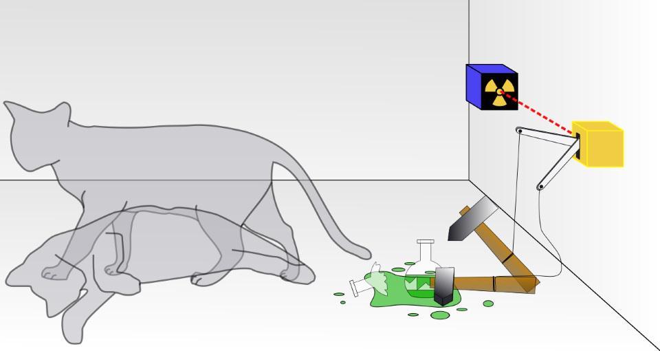 Перевод На самом ли деле квантовое измерение уничтожает информацию?