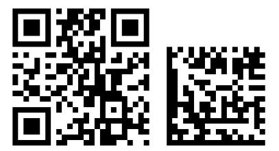 Сравение Data Matrix и QR Code