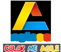 Agile Eastern Europe Logo