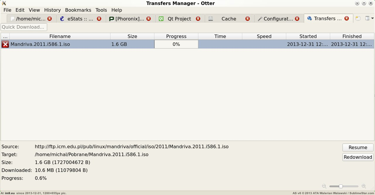 Downloads dialog in Otter browser