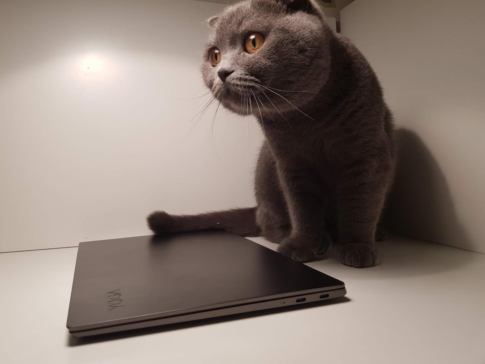 Обзор ноутбука Lenovo S730-13 (2018): мощное железо в стильном алюминиевом корпусе