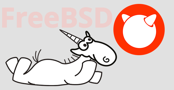 FreeBSD, CWE