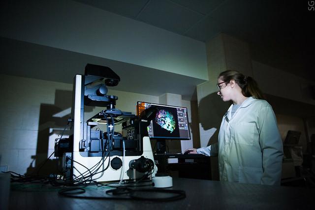 Магнитно-золотой наногибрид может помочь в борьбе с раком