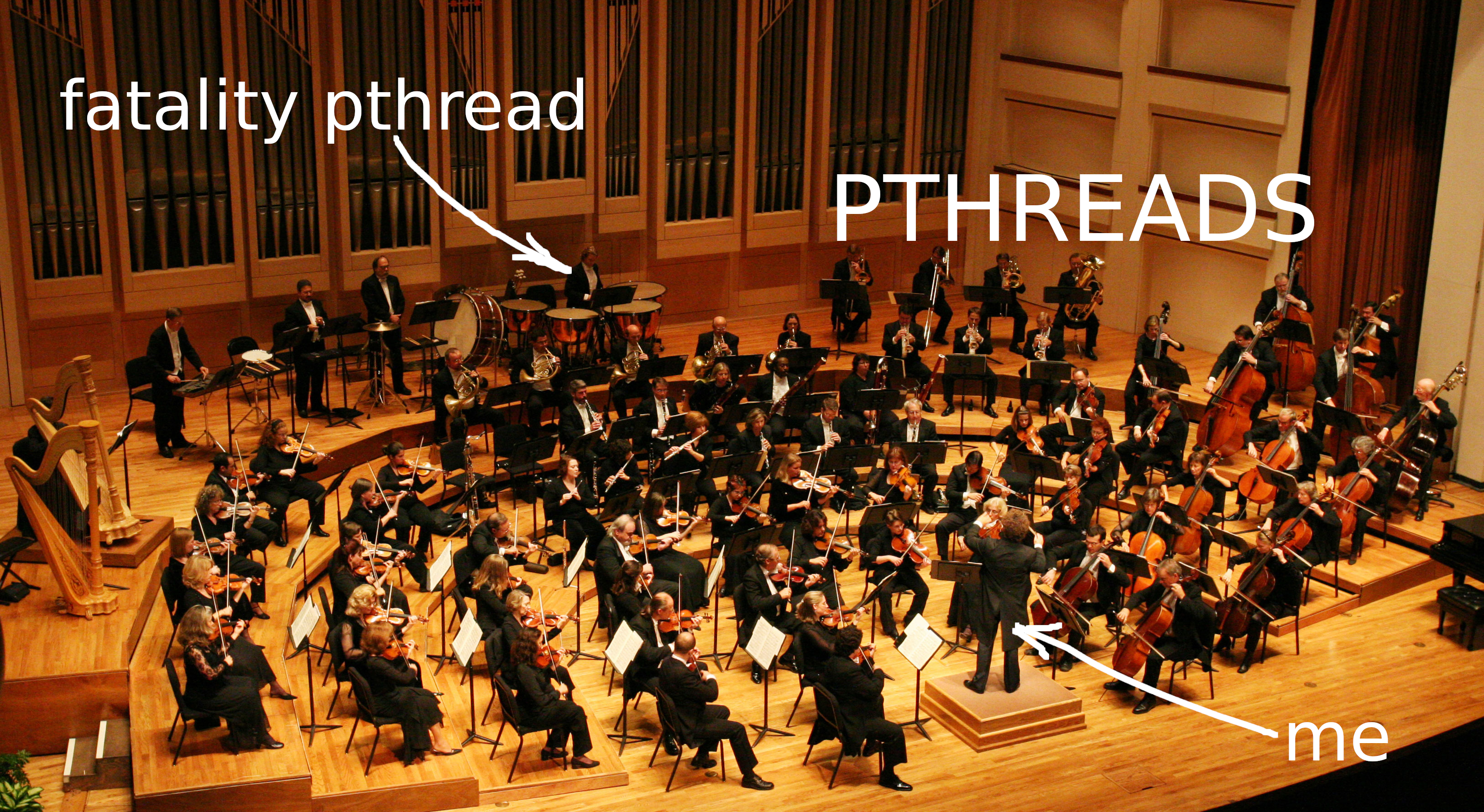 Image source: https://singletothemax.files.wordpress.com/2011/02/symphony_099_cropped1.jpg