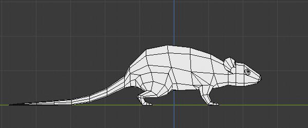 Rat model