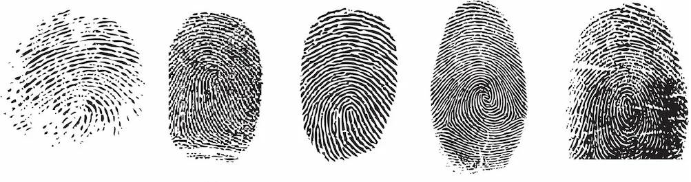 Биометрические персональные данные, нюансы и тонкости обработки