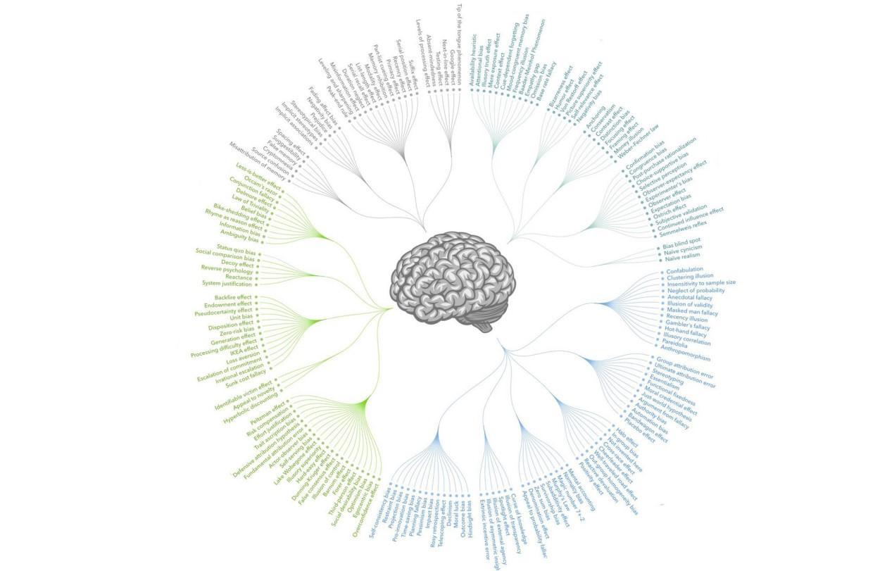 Когнитивное выпрямление: сеанс иллюзий с полным разоблачением