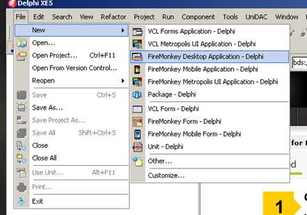 Creating a New FM Application in Delphi