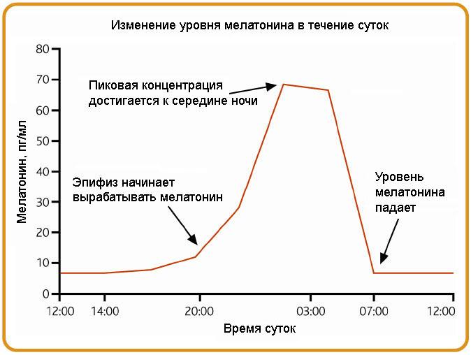 Стимуляция выработки мелатонина