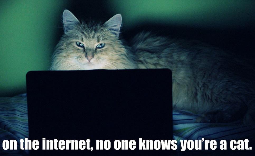 Анонимность В Интернете Инструкция - фото 7