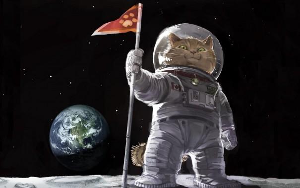 Хабр-форсайт: 6.000.000 тонн мокреньких котят в космосе