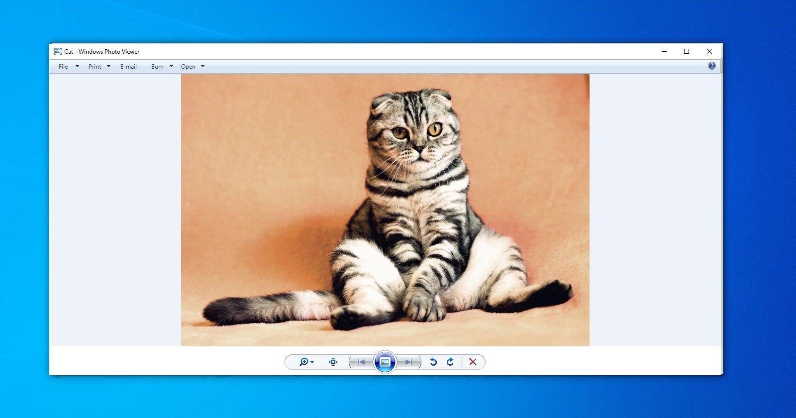 Перевод Как вернуть Windows Photo Viewer в Windows 10