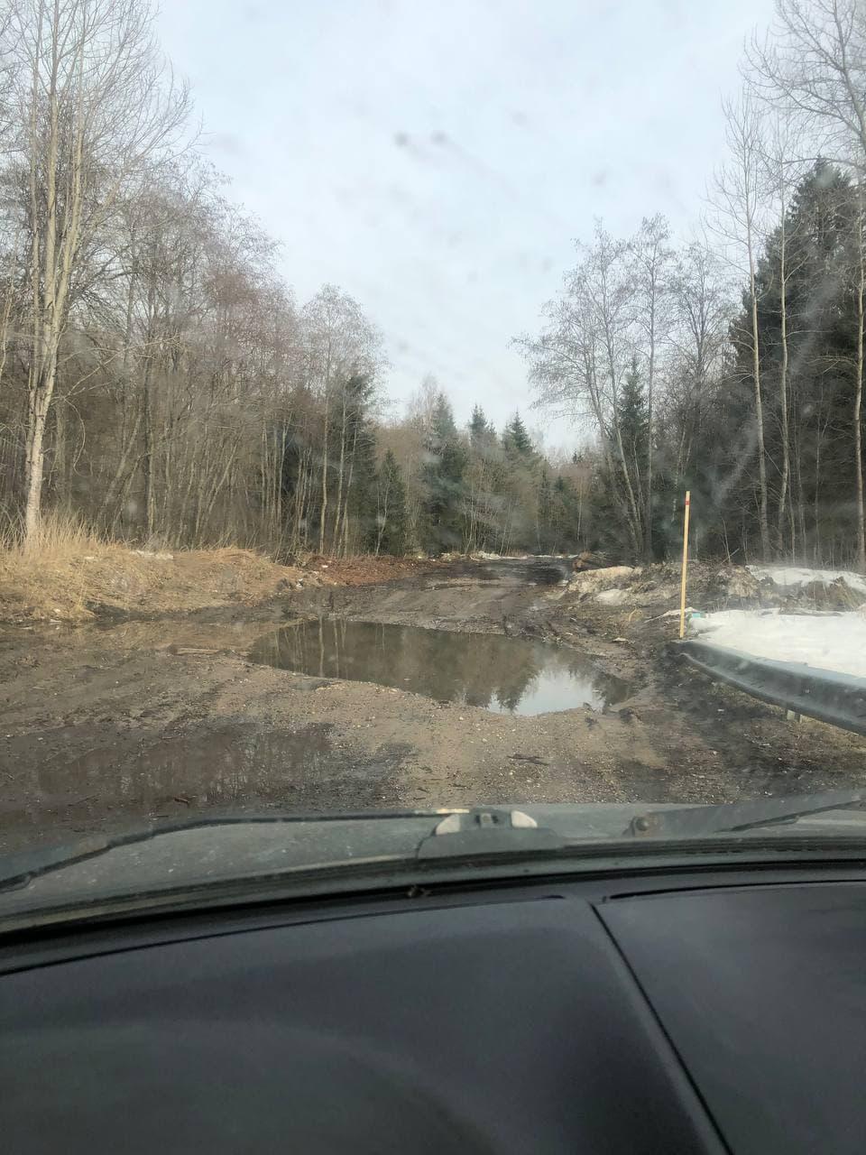 swamp_road