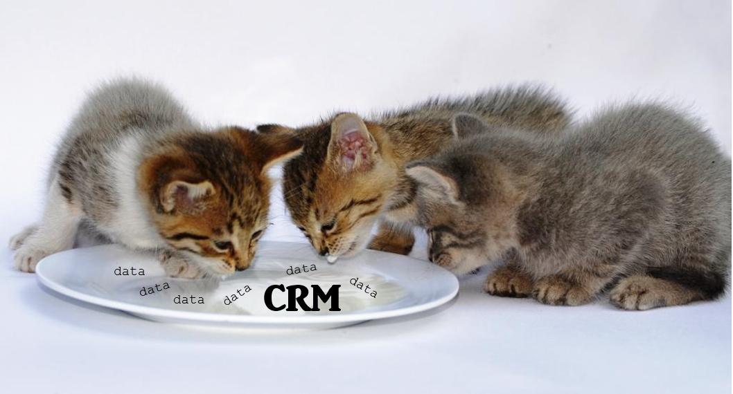 CRM  для кого?