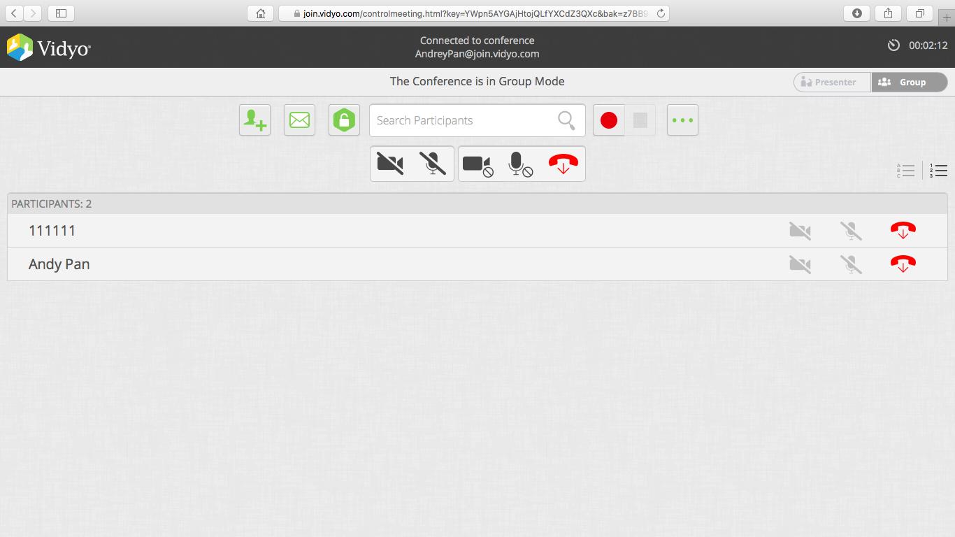 Скриншот с несколькими участниками подключенными к сервису Vidyo