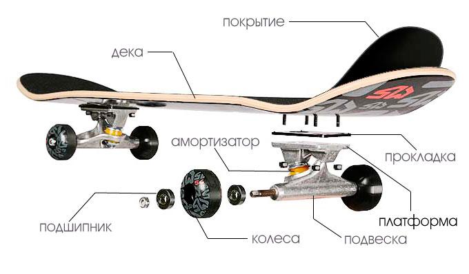 Как проанализировать катание на скейтборде с помощью ПВДФ пленки