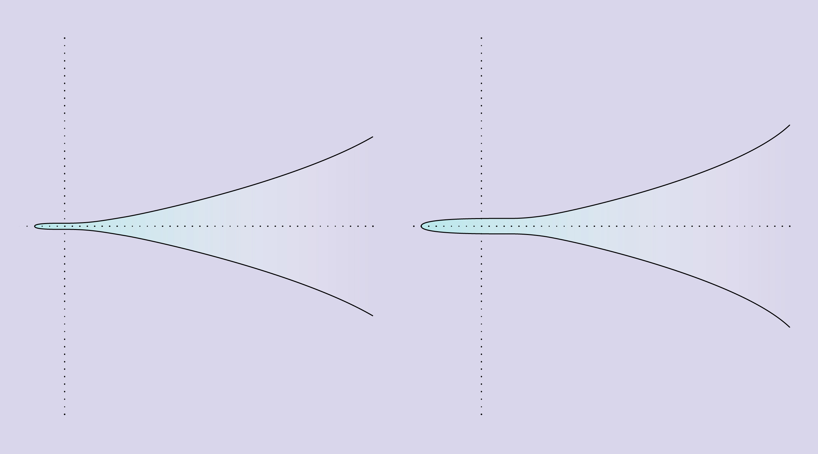 New evidence demonstrates the existence of two types of infinite curves