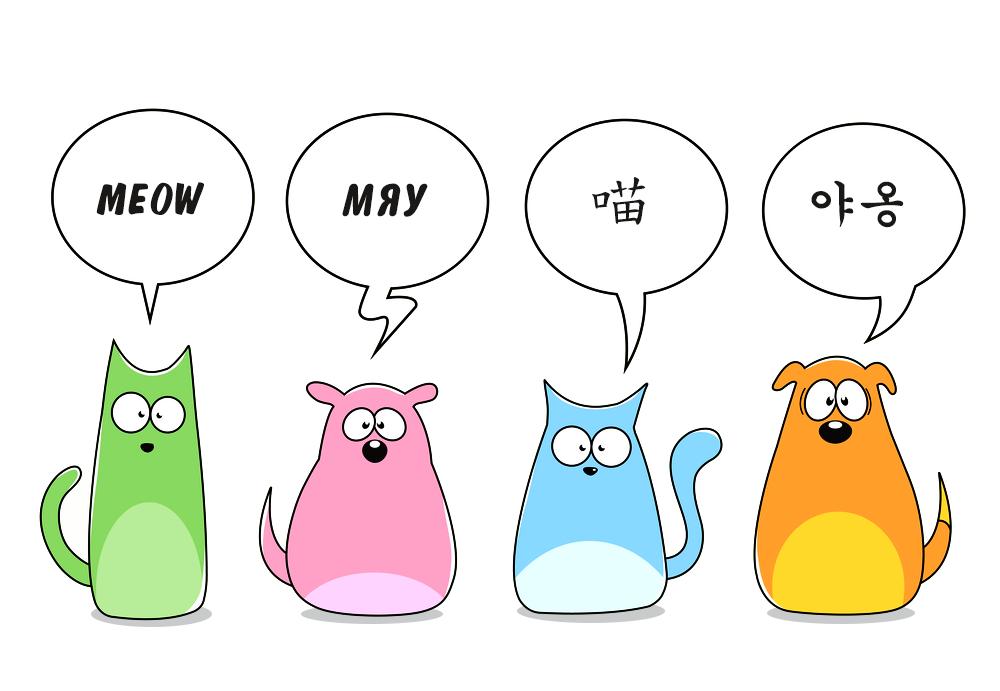 На какие языки лучше переводить свой продукт?
