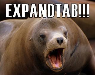 EXPANDTAB!!!