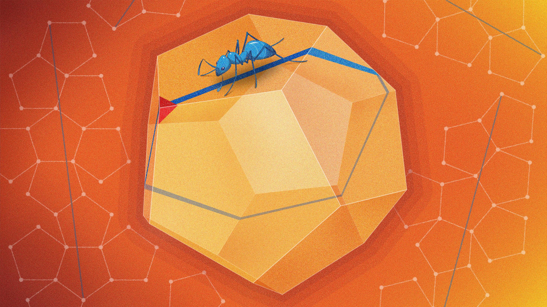 Перевод Математики совершили новое открытие, связанное с додекаэдром