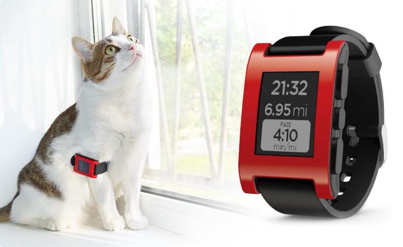 Обзор на умные часы Pebble